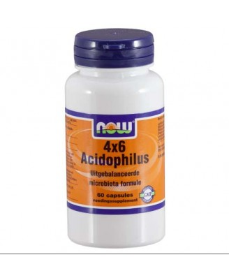 Now Foods, 4 x 6 Acidophilus, 60 Capsules