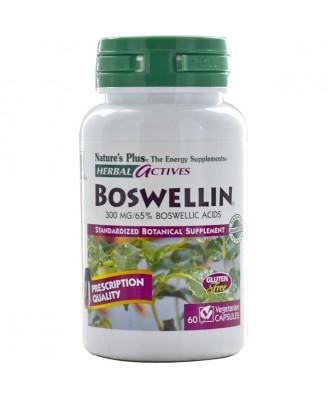 Herbal Actives - Boswellin 300 mg (60 Vegetarian Capsules) - Nature's Plus