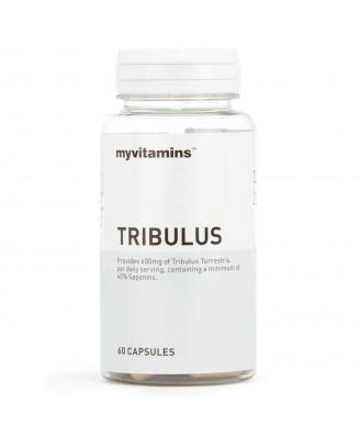 Myvitamins Tribulus, 60 Capsules (60 Capsules) - Myvitamins