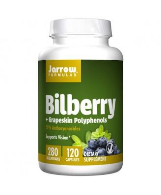 Bilberry + Grapeskin Polyphenols 280 mg (120 Vegetarian Capsules) - Jarrow Formulas
